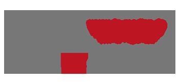 WerbeagenturDN-Medien, Waldkirch_Logo